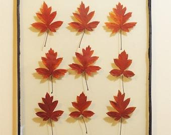 Leadlight Botanical - Crabapple Colour x 9