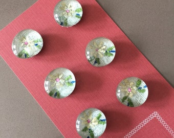 Glass Floral Magnets for Fridge/Office, Set of 6- FREE SHIPPING