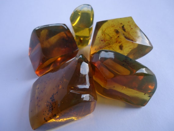 Amber lot of five pieces - Clear yellow with green reflections - Mexican amber 115 gr