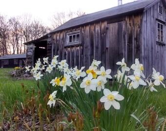 New England Farm - Sauna