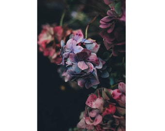 Flowers Photo - Botanical - Nature Photo - Purple Flowers - Vertical - Digital Photo - Digital Download - Instant Download - Wall Decor