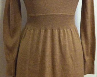 Long Sleeve, Turtle Neck Merino Wool Dress from Lord & Taylor