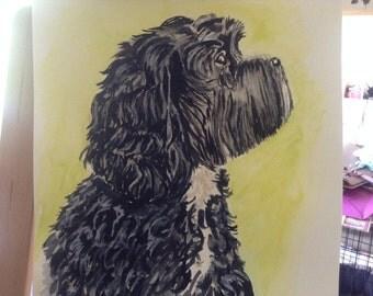 Your Pets Portrait