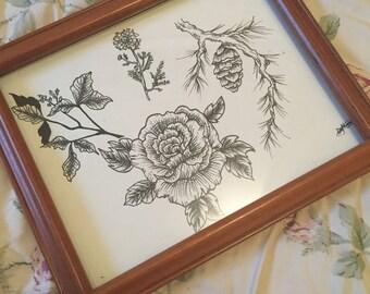 Plant sketching