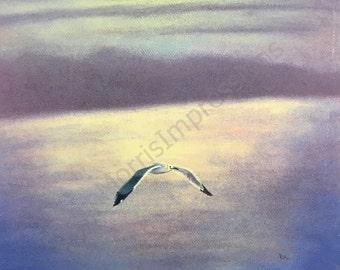 OOAK pastel drawing, seascape of seagull in flight