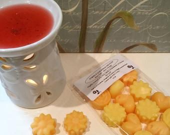Boss Type - Boss Orange - Highly Fragranced Soy Wax Melts