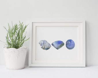 Blue sea shell print, seashell watercolor print, seashell digital print of watercolor painting, contemporary coastal wall art, digital shell