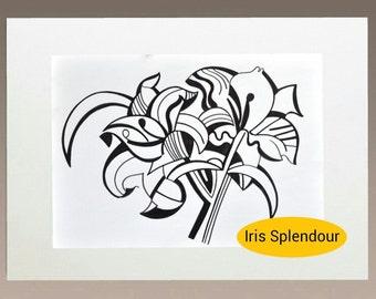 Learn to draw download - Iris Splendour
