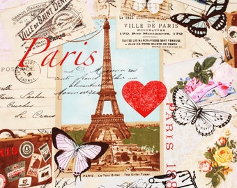 Paris Eiffel Tower, Ville De Paris, Butterfly, Bike by Timeless Treasures Fabric by the Half Yard