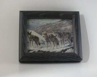 5 x 6 Tiny Little Small Grey Wolf Picture Frame