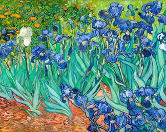 Vincent van Gogh 1889, Irises Saint Remy Iris, HD Canvas Print or Art Print, Artwork Wall Poster Impressionism Print on Canvas Van Gogh