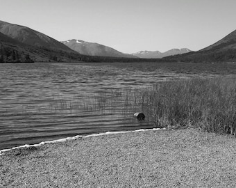Black and White Lake, Alaska #2