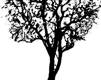 Tree Ink Drawing Canvas Wall Art