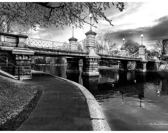 Boston public garden,foot bridge,