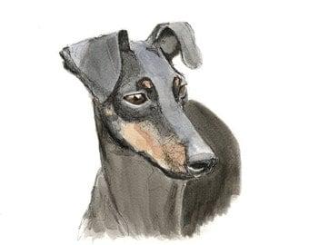 Manchester Terrier - fine art print