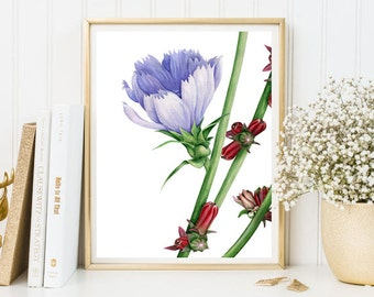 Chicory watercolor flowers printable floral wall art living room decor home decor kitchen print flowers poster wall art print lilac green