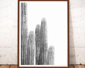 Cactus Print, Cactus Plant, Cactus Wall Art, Cactus Decor, Cactus Photography, Black and White Decor, Cactus Printable, Desert Cactus Print