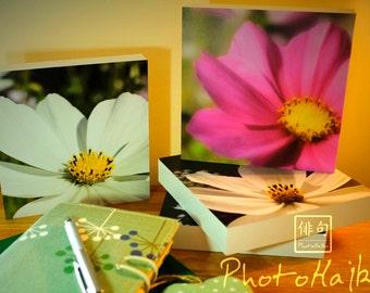 Floral Wooden Block Prints / Desktop Blocks - Set of Four - Cosmos Flowers