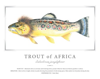 Trout of Africa