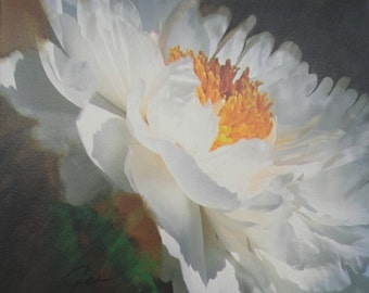 """PEONY Print on stretched canvas 19"""" x 14"""""""