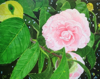 "Camellias, Acrylic Painting by CYP, Original on Canvas 20"" x 16"""