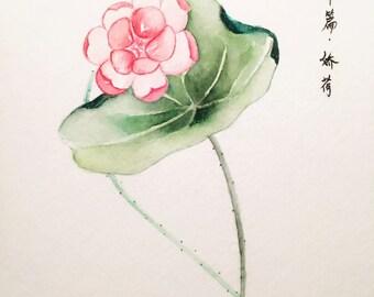 Waterlily - original painting