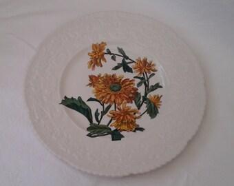 "Royal Cauldon Bristol Ironstone plate in ""Haywood"" Crysanthemum"