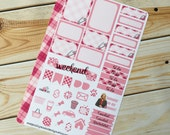 Punky Pink Weekly Set for Erin Condren (544)