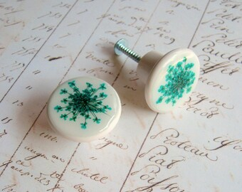 Real Flower Drawer Knobs - Queen Anne's Lace - botanical home décor, drawer pull, decorative knob, pressed flower, turquoise, natural, ooak