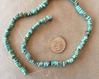 Southwestern Turquoise, chips 4-6 mm   (Item # 5009)