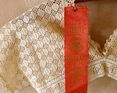 1923 Mifflin County Fair Ribbon Winner Crochet Chemise Bodice
