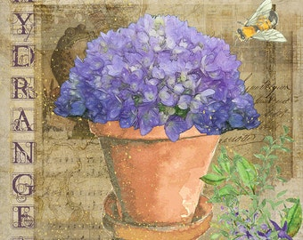Hydrangea Collage - Wall Art 8 X 8 inches - Printable - Download, print and cut