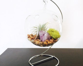 Hanging Glass Terrarium With Air Plant, Amethyst and Stand