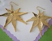Gold Leaf Earrings, Maple  Leaf , Real Leaf Earrings, Real Gold Japanese Maple Leaf, Gold, Nature, LEP35