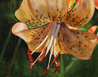 Lily Painting Print, Watercolor, Fine Art, Home Decor, Floral, Flower, Fine Art, Realism, 5 x 7, May Lily, Watercolor Painting, Art Print