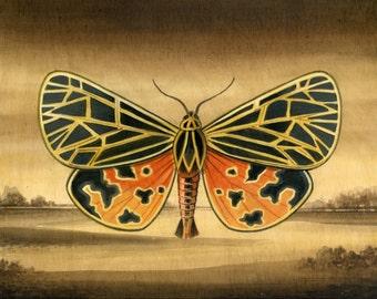 Moth Landscape