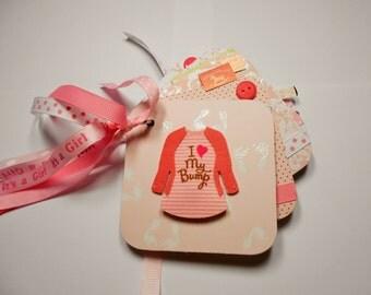 Pregnant Mini Album, Expecting a Girl Album, Baby Girl, Pregnant Brag Book, Photo Album, Premade Album, Memory Book, Chipboard Album