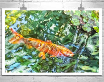Psychedelic Art, Fish Picture, Gift, Surreal Art, Water Art, Abstract Art, Photo on Canvas, Water Ripples, Water Reflections, Lily Pads