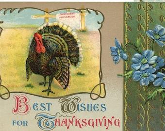 Thanksgiving turkey, blue flowers, Antique American greetings postcard, vintage postcard