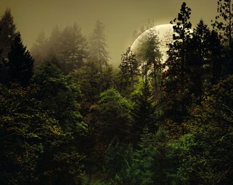 Forest Moon Surreal Landscape Photography Print Dreamy Woodland Wall Art Rustic Cabin Home Decor