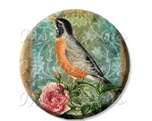"""50% OFF - Pocket Mirror, Magnet or Pinback Button - Wedding Favors, Party themes - 2.25""""- Exquisite Robin MR151"""
