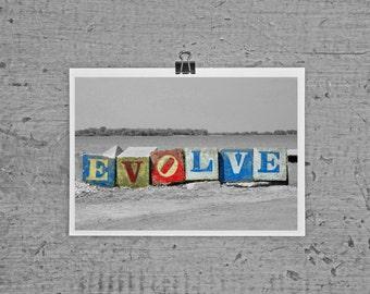 Evolve - 4 x 6 photograph