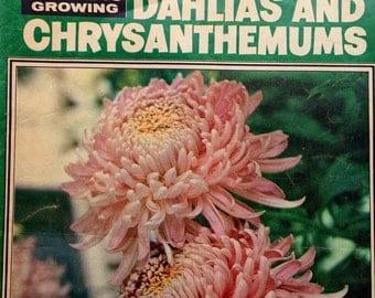 Vintage Retro Dahlias and Chrysanthemums magazine by Womens Weekly