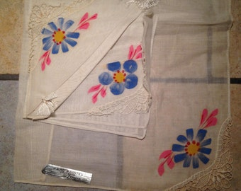 NEW NEVER USED Handkerchief Set with Hand Painted Flowers