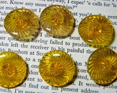 Antique Sweet Shabby Glass Buttons in Golden Glass Reversed Molded Flower Buttons Set of 6