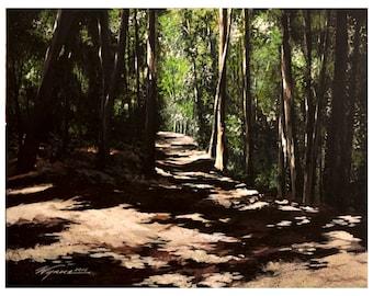 Walking Walden Woods
