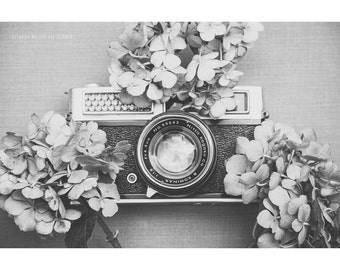 Still Life Photography Black and White Vintage Camera Hydrangea Flowers Floral Nature Rustic Decor Dreamy Shabby Chic Photographer Fine Art