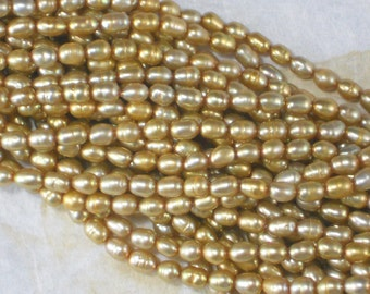 Pretty Gold Oval Freshwater Pearls 6mm x 4mm Golden Rice Full 16 inch Strand (4083)