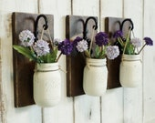 NEW...Rustic Farmhouse... Wood Wall Decor...Set of 2 or 3 Individual Hanging Painted Mason Jars...Your Choice of Color