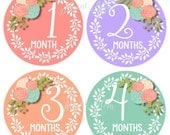 FREE GIFT, Baby Girl Month Stickers, Monthly Baby Girl Stickers, Photo Prop, Floral Roses, Milestone Stickers, Just Born Floral Bodysuit